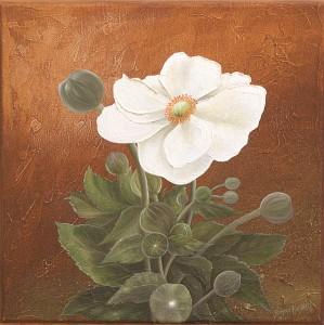 Fleur blanche (30X30)